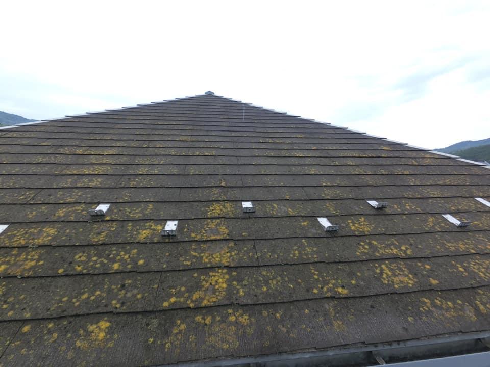 屋根塗装前は、コケがひどいです。
