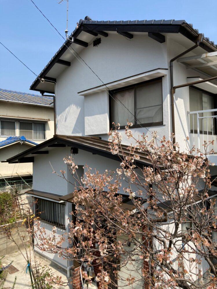外壁塗装後ピカピカのお家を記念撮影をしました。暖かい日差しに良く映えています